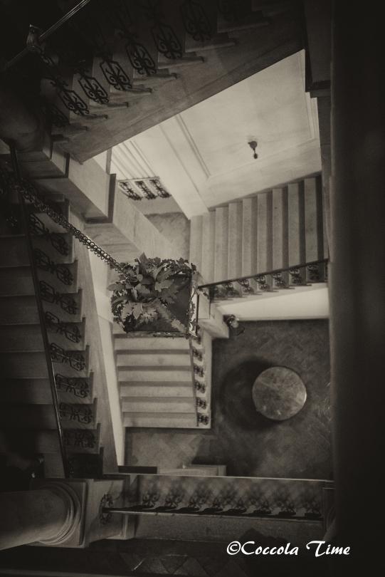 DSC_1955ok